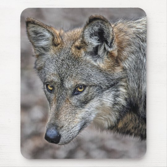Wolf Glimpse Close Up Mouse Pad