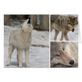 Wolf - Greeting Card - Blank Personalize It