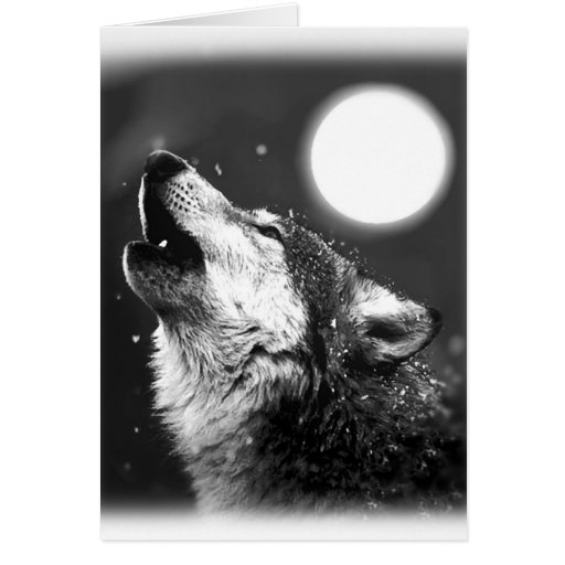 Wolf Howling at Moon Greeting Cards