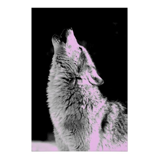 Wolf Howling at Moon Posters