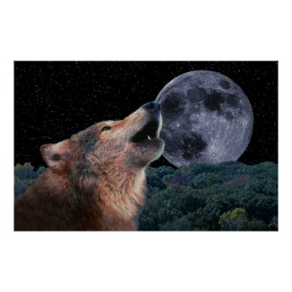 Wolf Howling at the Moon WIDE - Poster