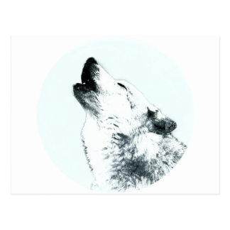 Wolf Howling Postcard