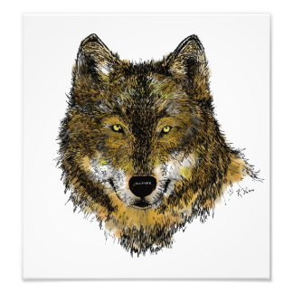 Wolf in Colour - Photo Print