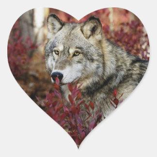 Wolf in red foliage heart sticker
