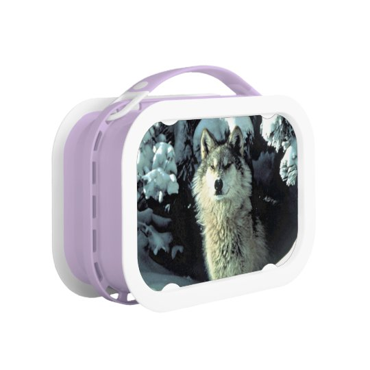 Wolf In The Snow Lunch Box