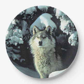 Wolf In The Snow Paper Plate