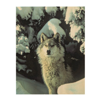 Wolf In The Snow Wood Print