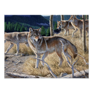 Wolf in winter forest poster