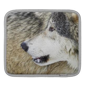 Wolf iPad Sleeve