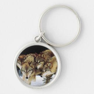 Wolf keys key ring