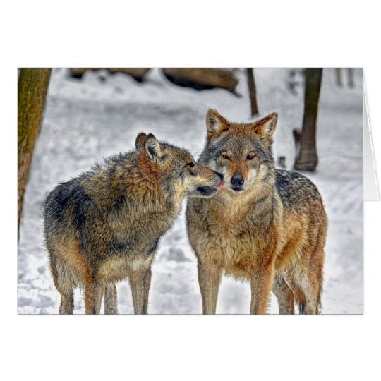Wolf Kiss Card