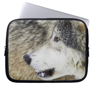Wolf Laptop Computer Sleeves