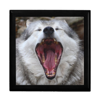 wolf large square gift box