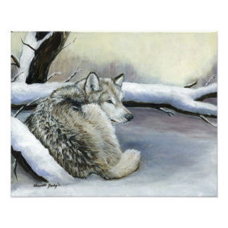 Wolf Laying in the Snow Art Photo Print