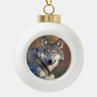 Wolf Lovers Christmas Ceramic Ball Christmas Ornament