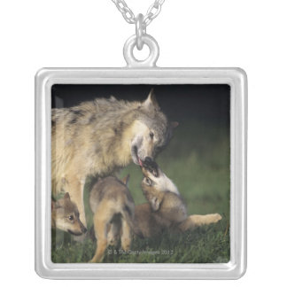 Wolf mother with young pups silver plated necklace