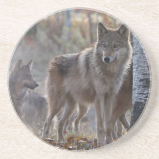 Wolf pack drink coasters