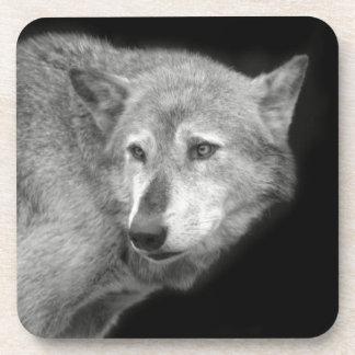 Wolf Pack Leader copy.jpg Coaster