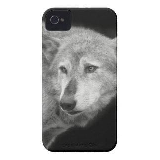 Wolf Pack Leader copy.jpg iPhone 4 Case-Mate Cases