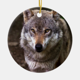 Wolf portrait christmas ornament