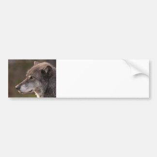Wolf Profile Bumper Sticker