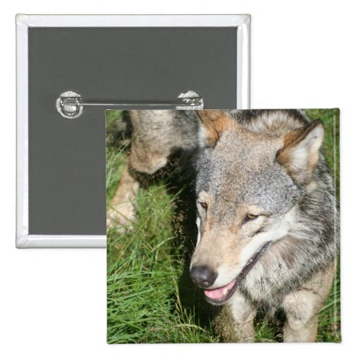 Wolf Prowl Button