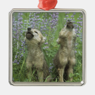 Wolf Puppies Howling In Meadow Christmas Ornament