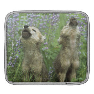 Wolf Puppies Howling In Meadow iPad Sleeve