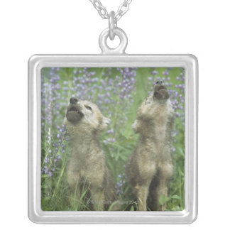 Wolf Puppies Howling In Meadow Silver Plated Necklace