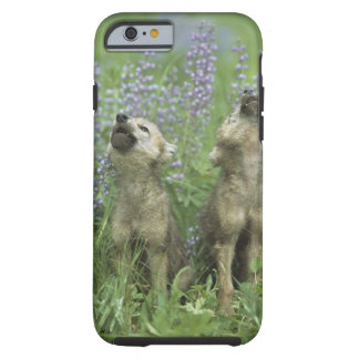 Wolf Puppies Howling In Meadow Tough iPhone 6 Case