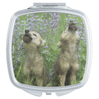 Wolf Puppies Howling In Meadow Vanity Mirrors