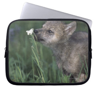 Wolf Puppy Sniffing Mountain Wildflower Laptop Sleeve