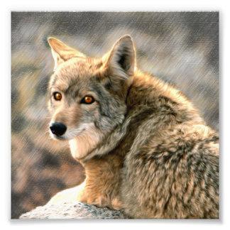 Wolf Rain Graphic Art Photo Art