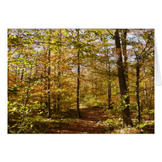 Wolf Rocks Trail in Autumn Pennsylvania Landscape Card