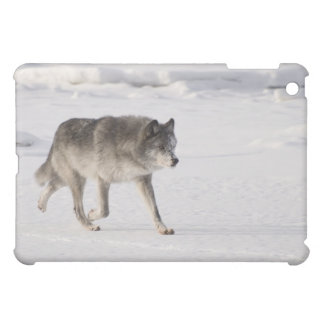Wolf running in the snow case for the iPad mini