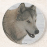 Wolf Sandstone Drink Coasters
