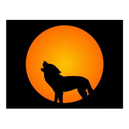 Wolf Silhouette Post Cards