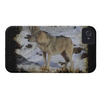Wolf & Snow Wolf-Lover Wild Animal Alpha Male iPhone 4 Case