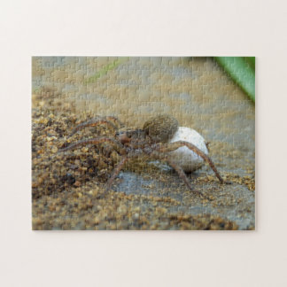 Wolf Spider With Egg Sac Photo Puzzle and Gift Box