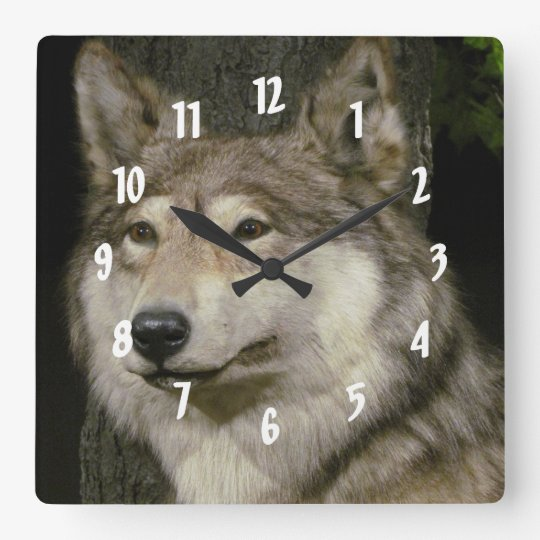 Wolf Square Wall Clock