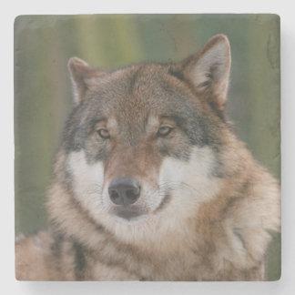 Wolf Stone Coaster