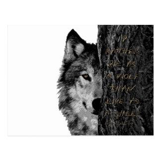 Wolf vs Sheep Postcard