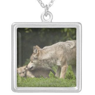 Wolf with Pup Silver Plated Necklace