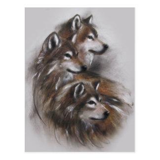 wolf wolves animals,wildlife,wildlife art,nature, postcard