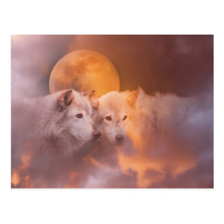 Wolf Wolves Artwork Postcard
