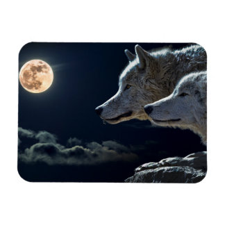 Wolf Wolves Howling at the Full Moon at Night Magnet