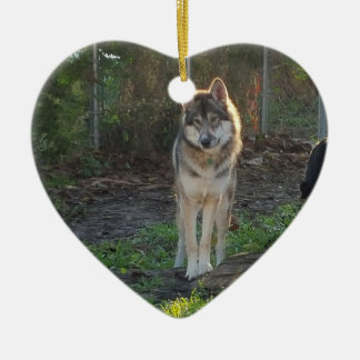 Wolfdog in sunlight ceramic heart decoration