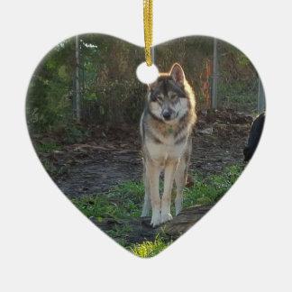 Wolfdog in sunlight christmas ornament
