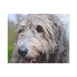 Wolfhound Gallery Wrap Canvas