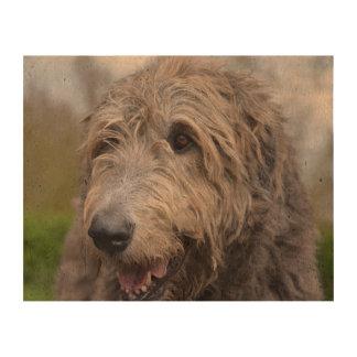 Wolfhound Queork Photo Prints